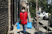 راهاندازی سامانه خرید اینترنتی بسته بهداشتی در ایلام