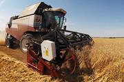 ارائه خدمات غیرحضوری در نظاممهندسی کشاورزی قم