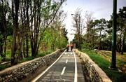 فیلم | پیکنیک در پارک چیتگر بدون توجه به کرونا | پارک تعطیل شد
