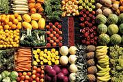 تولید سالانه ۴۲۵ هزار تن محصول خارج از فصل در سیستان و بلوچستان