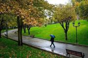 حضور در پارکها و بوستانهای شهر رفسنجان ممنوع است