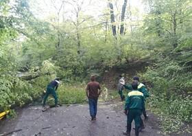 کرونا مانع بروز حادثه برای گردشگران پارک النگدره گرگان شد