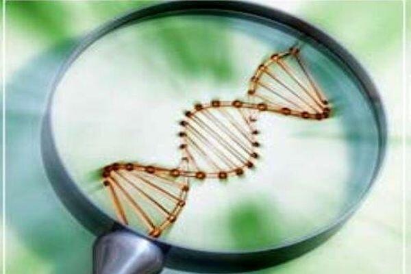 ذخایر ژنتیک