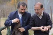 «حاجی مالکی» پایتخت سریال طنز میسازد