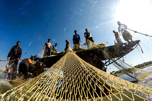 صید ماهی  جنوب