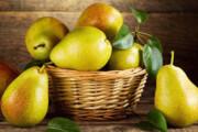 میوههایی با خاصیت آنتی اکسیدانی برای جلوگیری از چاقی