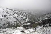 بارش برف بهاری در ارتفاعات املش