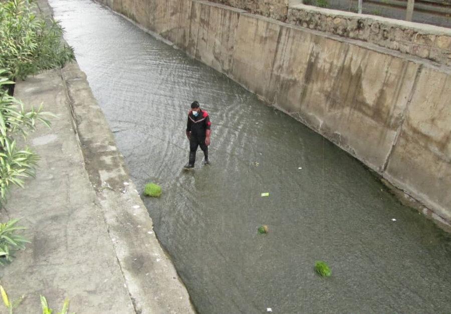 پاکسازی کانال های منطقه۱۳