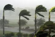 وزش باد شدید در برخی مناطق بوشهر
