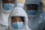 مثبت شدن نتیجه آزمایش ۵۱ بهبود یافته کرونا در کره جنوبی