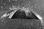 بارش باران | وزش باد شدید