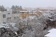 تصویر | بهار زمستانی در خراسان شمالی