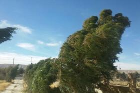 هواشناسی نسبت به وقوع توفان لحظهای در اصفهان هشدار داد