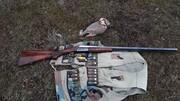شکارچی متخلف پرندگان در سردشت دستگیر شد