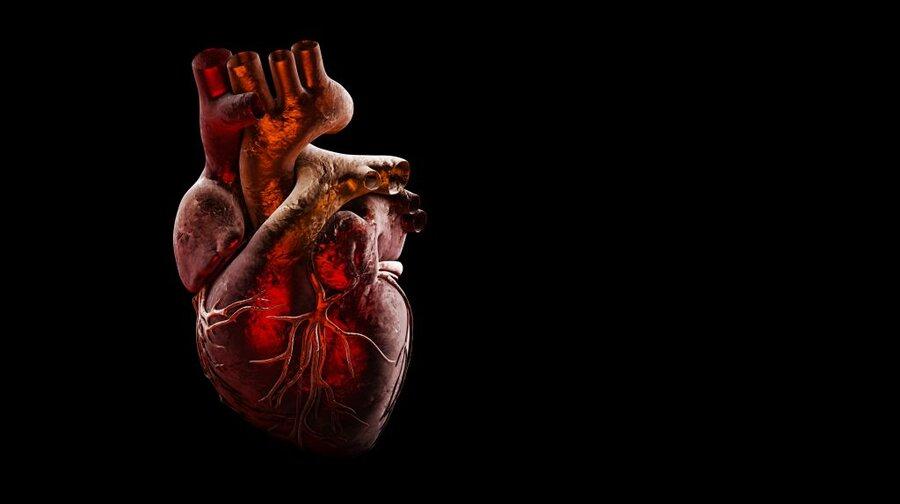 رابطه اسرارآمیز ویروس کرونا و قلب | کرونا ممکن است به قلب آسیب بزند