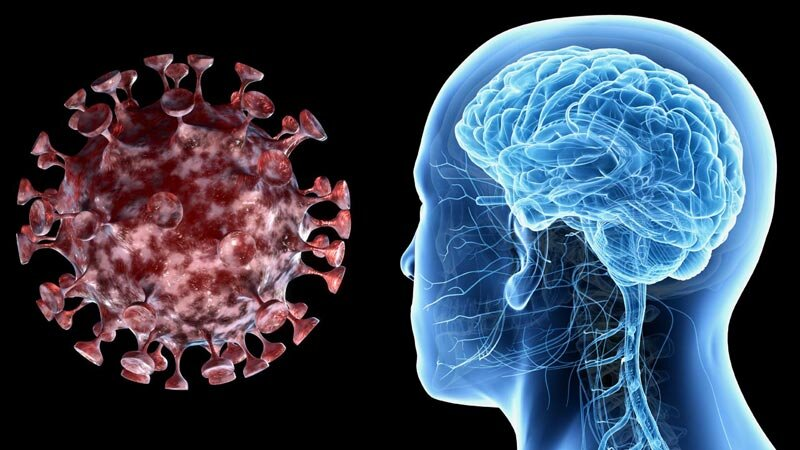 brain coronavirus