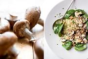 طرز تهیه سالاد قارچ | میانوعدهای گیاهی، جذاب و متفاوت برای روزهای قرنطینه