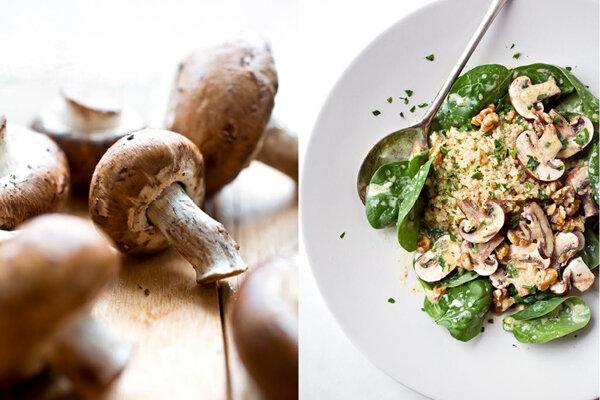 سالاد قارچ - آشپزی - تغذیه