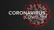 ثبت بیش از ۴ هزار مدرک از آخرین یافتههای علمی درباره کرونا در سامانه نماگر کووید ۱۹