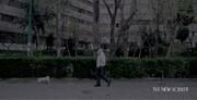 ببینید |  قرنطینه تهران به روایت نیویورکر