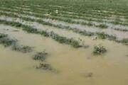 حوادث طبیعی ۲ هزار میلیارد تومان به یزد خسارت زد