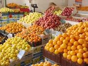 توزیع ۱۲۰۰ تن مرکبات احتکارشده از امروز | لیمو ترش و شیرین ارزان میشود؟