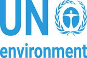 حمایت سازمان ملل متحد از سرمایهگذاری سبز