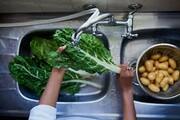 احتیاطهای غذایی برای جلوگیری از انتقال ویروس کرونا