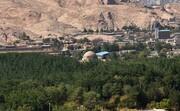 دادستان کرمان به موضوع قطع درختان جنگل قائم ورود کرد