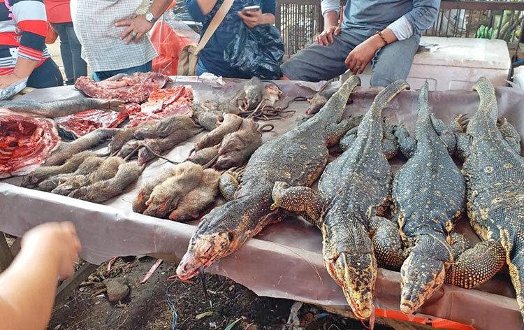 بازار فروش جانوران وحشي در اندونزي در دوران كرونا