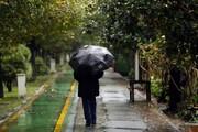 باران چند روز آینده مهمان  یزد است