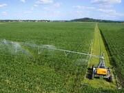 مشترکین حوزه کشاورزی برق رایگان دریافت میکنند