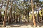 اسامی ۴ بوستان جنگلی تهران که تا ١۵ اردیبهشت تعطیل است