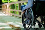 دانشجویان معلول البرزی رایگان تحصیل میکنند