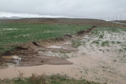 خسارت ۳۳۰ میلیارد تومانی توفان و سیل به بخش کشاورزی