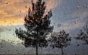 تهران بارانی میشود |پیشبینی آبوهوای پایتخت در ۴ روز آینده