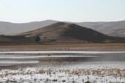 آخرین وضعیت آبی دو تالاب مهم آذربایجان شرقی