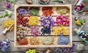 کشت گیاهان دارویی موردحمایت صندوقهای حمایت از توسعه منابع طبیعی