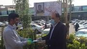 تجلیل از ۲۲ کارگر نمونه میادین تره بار در تهران