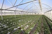 ساخت نخستین مزرعه سازگاری کشور در چمستان