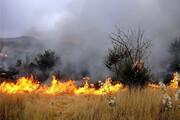 وقوع ۴ مورد حریق مراتع و پوشش گیاهی طی یک روز در همدان