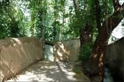 تعیین تکلیف باغ بودن ۸ پلاک ثبتی تهران