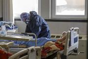 میانگین سنی فوتیهای کرونا | هشدار صریح وزارت بهداشت