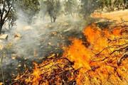 ضرورت آمادگی برای مقابله با آتشسوزی جنگلها و مراتع شاهرود