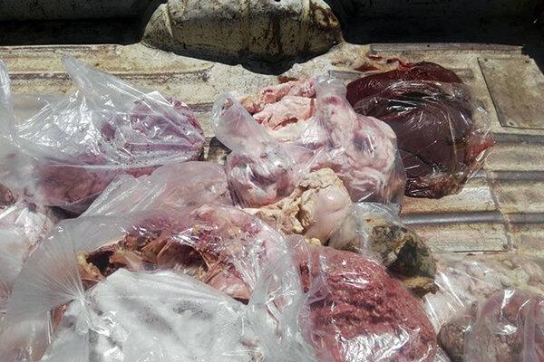 گوشت فاسد