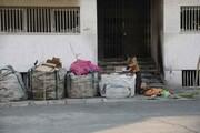دپوی زبالههامقابل دیوار منازل