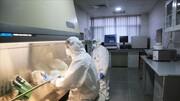 ویروس کرونا از یک انسان به بازار حیوانات ووهان منتقل شده است