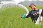 کشاورزان کود مورد نیاز را از مراکز مجاز تهیه کنند | توزیع ۹۳ هزار تن کود
