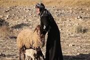 زندگی روستایی در جوار کرونا