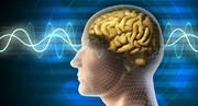 کشف کلید خاموش کردن درد در بدن | راهحلی برای ساخت داروهای مسکن
